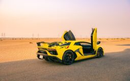 Where to hire a supercar in the UAE